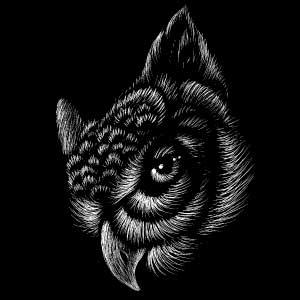 Dibujo de búho misterioso para tatuaje