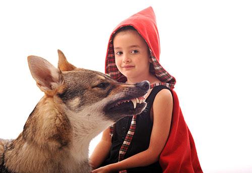 El lobo y caperucita roja