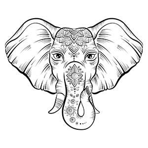 Elefante flor loto adornado