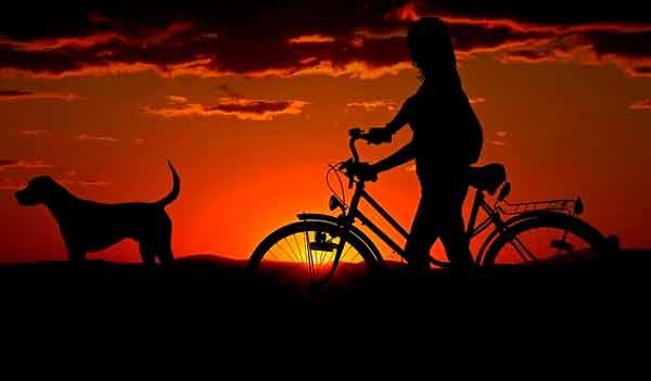 Mujer en bicicleta con perro