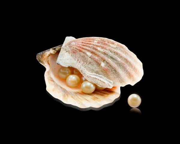 Ostra con perlas