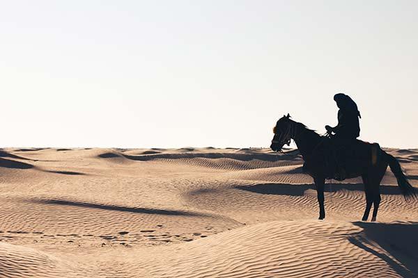 significado de soñar con caballos