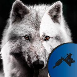 Significado Tatuaje de Lobo